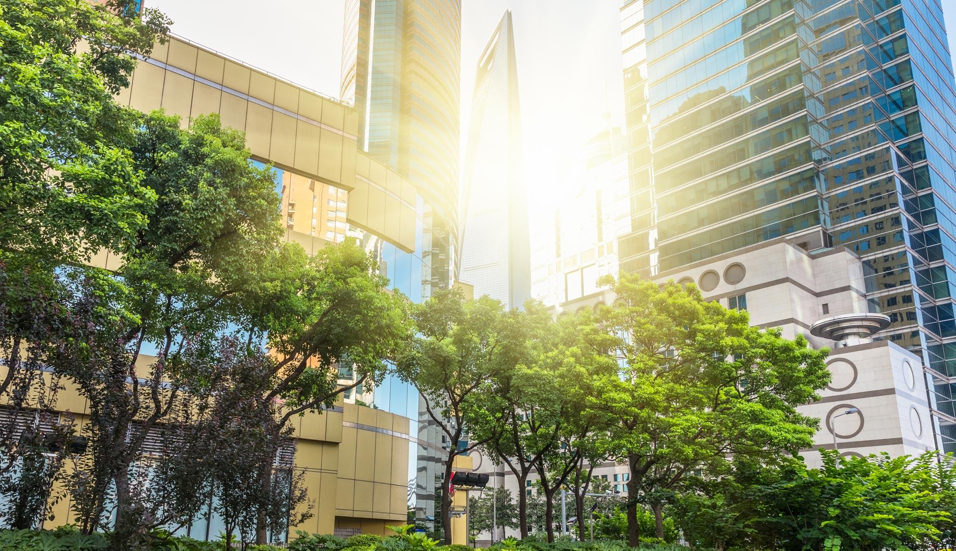 Stad en zon